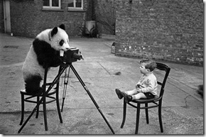camera,panda,animals,black,white,boy,photography-4f2c5489100e2124c26b0442c0a0102c_h