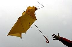 umbrella460