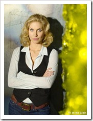 elizabeth-mitchell-as-erica-evans-2-412x550